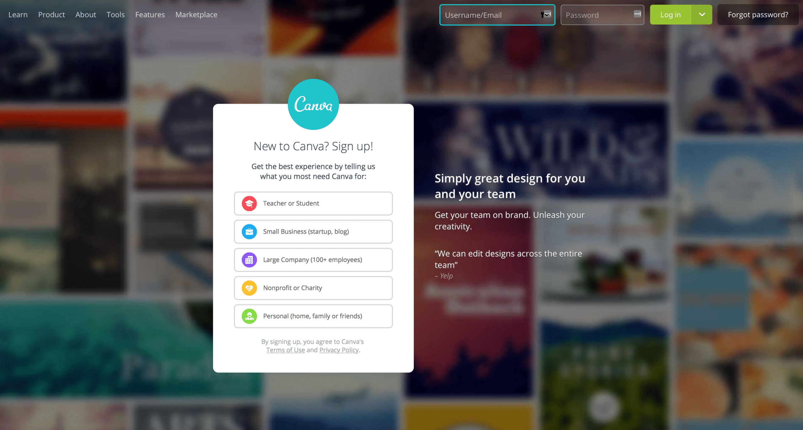 New to Canva?