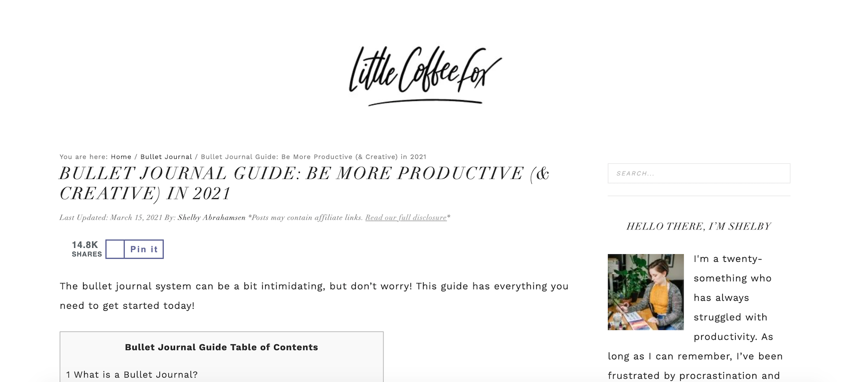 Bullet Journaling Niche site example