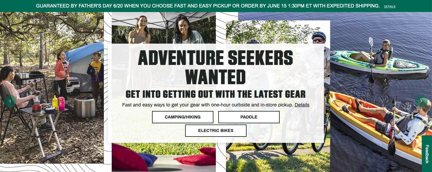 Dick's Sporting Goods Website